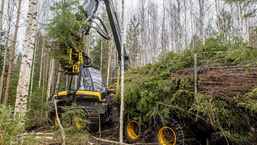 Metsähoitoyhdistys